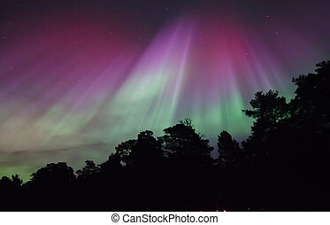 Northern lights - Scenic view of northern lights Aorora...