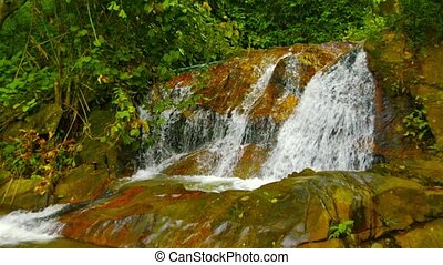 Phuket, Thailand. Waterfall on a creek in the rainforest