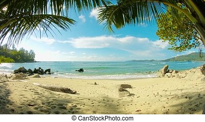 Tropical beach without people. Thailand, Phuket - Video...