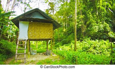 Forest hut. Thailand - FullHD video - Forest hut. Thailand