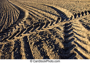 agriculture tractor traces on farm field soil