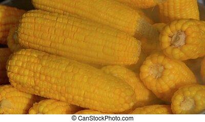 Video 1920x1080 - Local Vendo Cooks Sweet Corn Over Steam