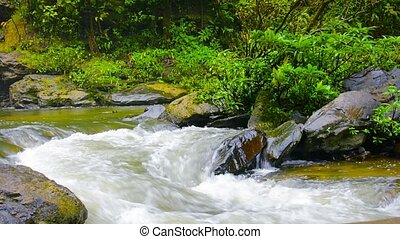 FullHD video - Mountain Brook Tumbling over Rocks with Sound...