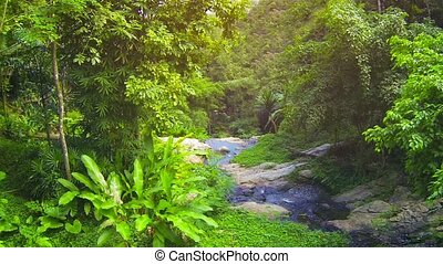 Natural Stream from Top of Waterfall in Thailand - Video...