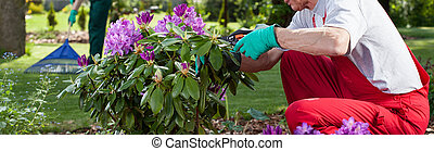 Couple work in the garden - Mature couple in overalls work...