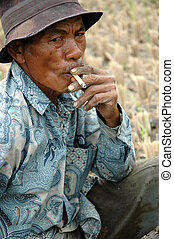 old farmer getting smoke after ploughing ricefield