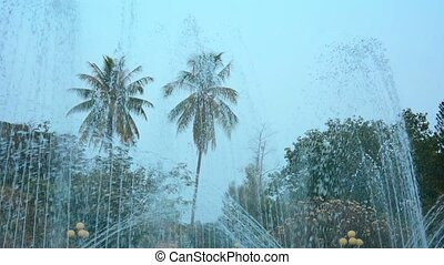 Palms, Trees and Skyline from Behind Majestic Fountains -...