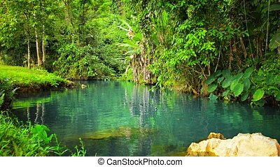 Greenery and Clear Blue Water at Blue Lagoon in Laos -...