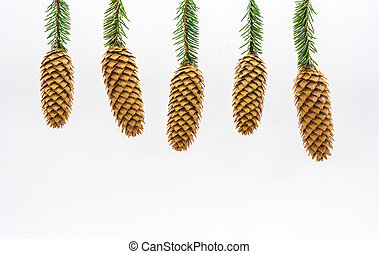 Fir cones on a white background - Five fir cones on the...