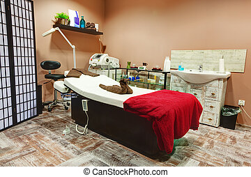 Beauty salon and massage interior. Relaxing, zen design -...