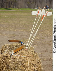 Bow and arrows. - Bow and arrows are opposite goals.