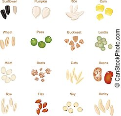 Plant seed icon flat set with pumpkin corn wheat  sunflower  isolated vector illustration