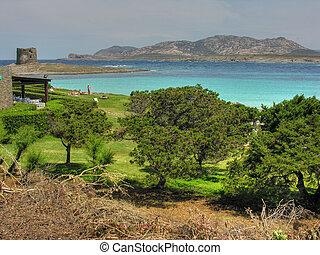 Sardinia Coast in summer, Italy - Detail of the coast of...