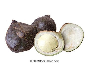 Sumatra Exotic Beans Isolated - Isolated image of Sumatra...