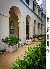 Ferns and flowers outside City Hall, in Pasadena, California...