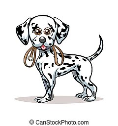 Dalmatian Puppy - Dalmatian puppy with dog lead in his...