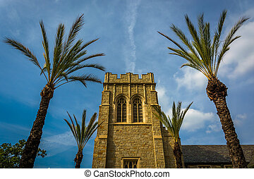 Palm trees and church in Pasadena, California