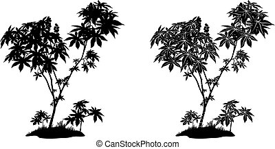 Castor Plant Contours and Silhouette - Castor Plant with...