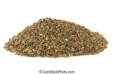 Pagoda Tree Seed - Pagoda tree seed used in chinese herbal...
