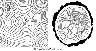 Vector tree rings background and tree log cutted.