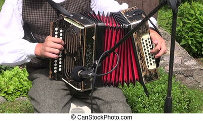 musician play folk country music - Vilnius district,...