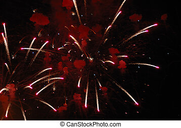 Fireworks - Beautiful fireworks on black sky. Colorful...