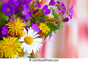 Colorful bouquet of field flowers . - White daisy flowers...