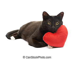 Black cat and red heart - Black cat lying and using the toy...