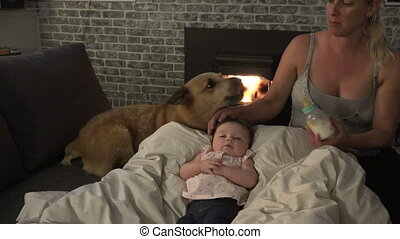 Mom Baby and Dog - The gang is back at it again with a mom...