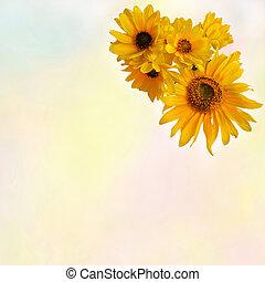Saudação, floral, cartão, com,...