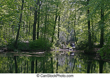 Pond with water reflection in spring, Lower Saxony, Germany