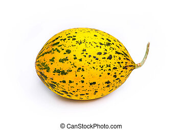 Yellow and Green Speckled Santa Claus Melon on a plain white...