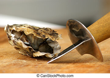 fresh raw organic oyster from the irish west coast