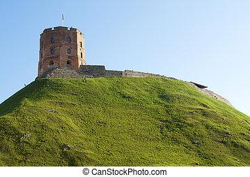 Tower of Gediminas Vilnius Lithuania