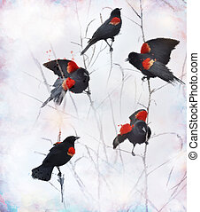 Red Winged Blackbirds - Digital painting Of Red Winged...