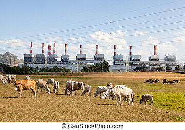 Mae Moh coal-fired power plant in Thailand.