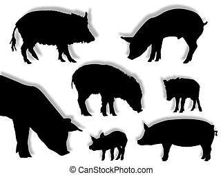 Pig silhouettes - Pig and wild boar silhouettes in different...