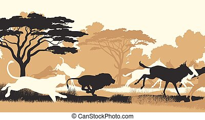 Lions hunting wildebeest - EPS8 editable vector cutout...