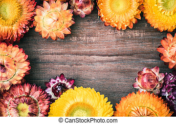 Everlasting flowers on wooden board for use as background