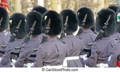 The palace guards holding their guns marching towards...