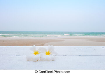 Tropical flowers on the beach