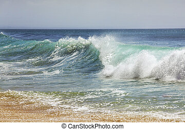 Indian ocean - Big wave crashes on to the shore Indian ocean...