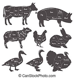 Vintage diagram meal cutting of domestic animals - Vintage...