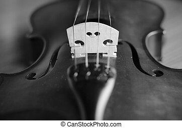 black and white violin - classic black and white violin