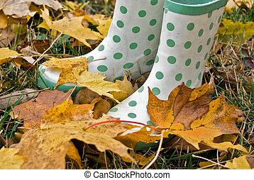 Fall Fun - Fun boots in fall leaves.