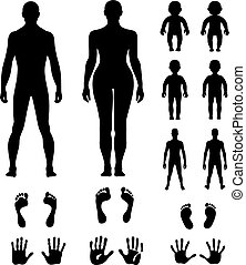 Full length front, back human silhouette vector...