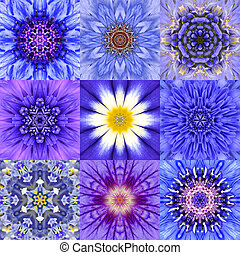 Collection of Nine Blue Concentric Flower Mandalas...