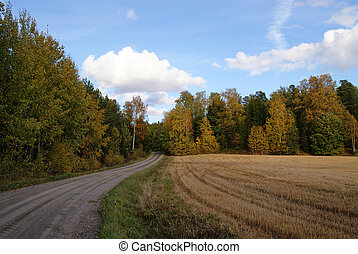 Country Road In Autumn - A dirt road across Finnish...