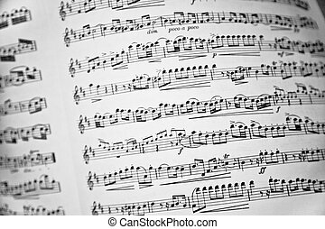 Music score - Close-up of a white and black music sheet