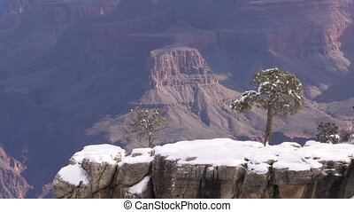 Winter at Grand canyon - the grand canyon winter scenic